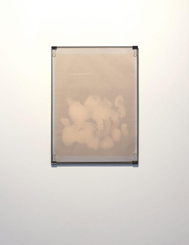 Ausstellungsansicht 6 // Ventilabo // Gallery KM0 // 2017